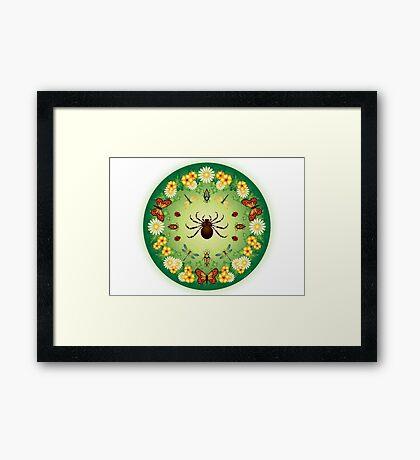 L'Aranja, the captivation of the spider's web Framed Print