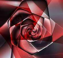 Abstract Spiral Rose by plunder