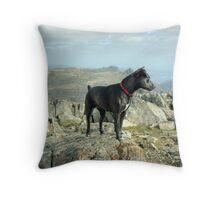 Tarn the Terrier... on Allen Crags Throw Pillow