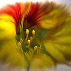 Trumpet Vine Blossom by Sandra Bauser Digital Art