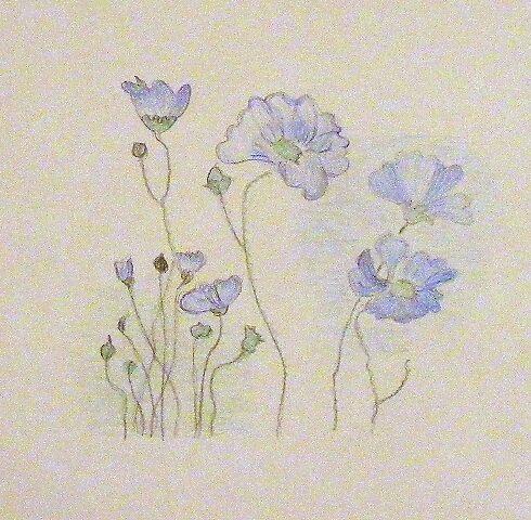 Cornflowers for Blythart!! by LadyE