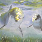 Dolphins by Ian Morton
