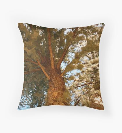 Mossy cypress tree Throw Pillow