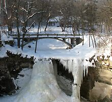 Minneopa Falls 2010 by swaby
