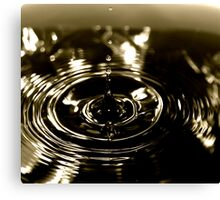 LP water Canvas Print