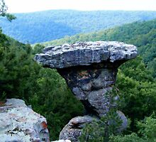 Pedestal Rock, Arkansas Ozark-St. Francis National Forest 6 23 2005 by NatureGreeting Cards ©ccwri