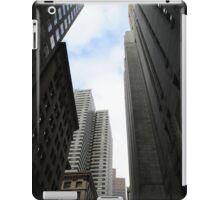 Urban Gorge iPad Case/Skin