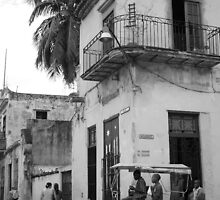 Havanna - Aguacate by -Loki-