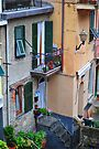 Cinque Terre Balcony by Robert Case