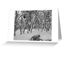 Taking it in turns, Loch Morlich, Scotland Greeting Card