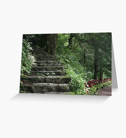 Steps in the Stone Garden Greeting Card