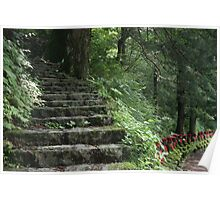 Steps in the Stone Garden Poster