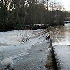 River Esk, Egton Bridge, North York Moors National Park by dougie1page2