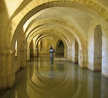 """Golden Echo"" Winchester Cathedral Crypt by Stephanie McPollock"