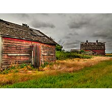 Barns in the prairies Photographic Print