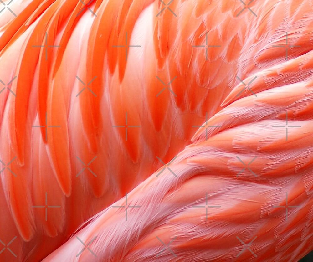 Featherlike by loiteke