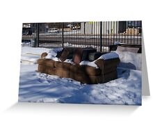 Cold view. Greeting Card