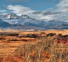 Via prairies by zumi