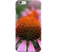 Purple Coneflowers iPhone Case/Skin