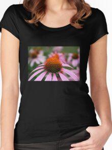 Purple Coneflowers Women's Fitted Scoop T-Shirt