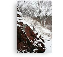 Snow red Canvas Print