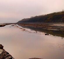 Monmouth Beach ~ Lyme Regis by Susie Peek