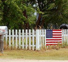 rural mailbox,American flag by dragonphly