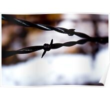 Barbed Wire Poster