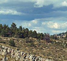 God's Ridge by Barb Miller