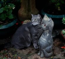 Pebbles and Friend. by Barbara Harris