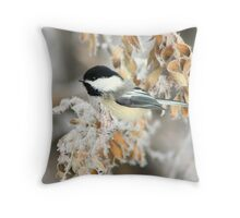 Black Capped Chicadee Throw Pillow