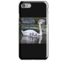 Mute Swan and her Cygnets iPhone Case/Skin