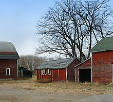 Old Farmstead in Minnesota by livinginoz