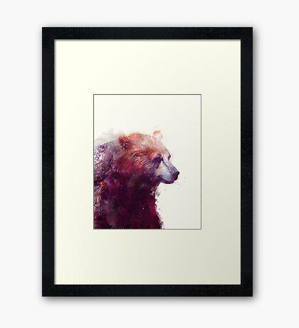 Bear // Calm Framed Print