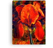 The Red Iris Canvas Print