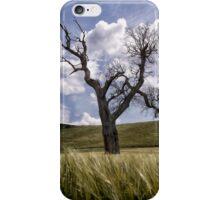 Dead Tree Dancing In A Cornfield iPhone Case/Skin