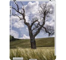 Dead Tree Dancing In A Cornfield iPad Case/Skin