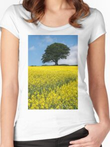 Sunshine Growing At The Roots Of A Tree Women's Fitted Scoop T-Shirt
