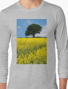 Sunshine Growing At The Roots Of A Tree Long Sleeve T-Shirt