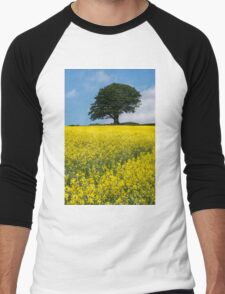 Sunshine Growing At The Roots Of A Tree Men's Baseball ¾ T-Shirt