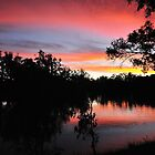 Murray River Reflections - Albury NSW - Australia  by Philip Johnson