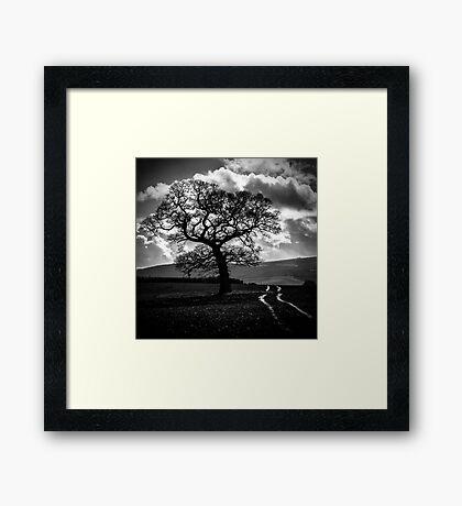 Passing Through Framed Print