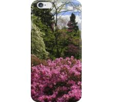 Pink Exuberance iPhone Case/Skin