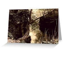 Nature Filtered Greeting Card