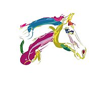 Cool t-shirt, horse Lovely in colours Photographic Print