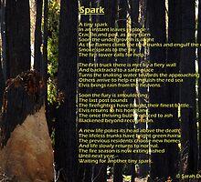 Spark by Sarah Donoghue
