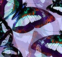 Abstracted Butterflies in Fauvist Colors #2 by Ivana Redwine