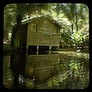 The boatshed, Sherbrooke forest Vic by ozzzywoman