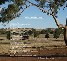 Life on the Land by Sarah Donoghue