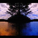 """The Revolving Power of the Gold`n`Blue Polariser by Phineous """"Flash""""   Cassidy"""